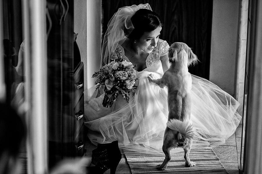 Image /var/www/vhosts/lvps92-60-120-255.vps.webfusion.co.uk/weddingphotographyselect/international/log-in/profiles/server/php/files/3569/valimatei (8).jpg By Vali Matei