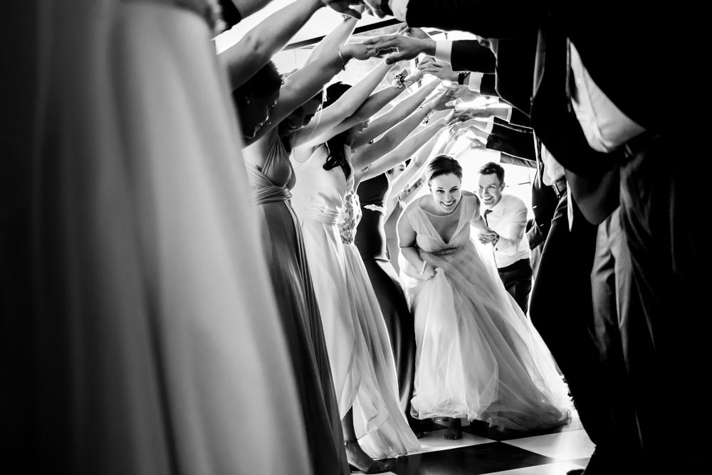 распространенное дерево литературные картинки свадьбы солнечного