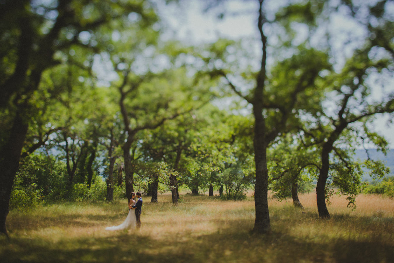 Image /var/www/vhosts/lvps92-60-120-255.vps.webfusion.co.uk/weddingphotographyselect/international/log-in/profiles/server/php/files/4033/WPS 03.jpg By Matija + Marina Weddings