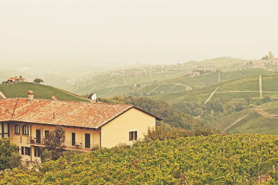 Luca Domenico Fumero image 1